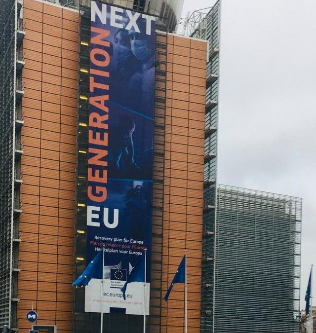 EU Social Good Tech Public Affairs Web Review, november 2020, by Nils Pedersen